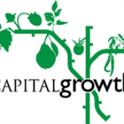 Capital Growth avatar image